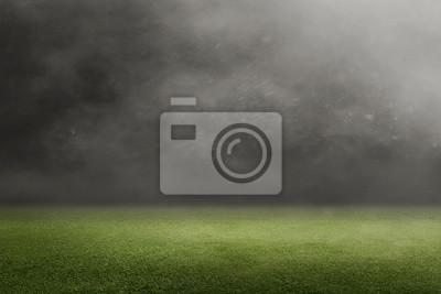 Naklejka Boisko do piłki nożnej z zieloną trawą