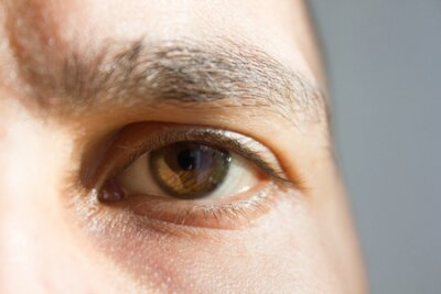 Naklejka brown eye of a man. parts of the face. vision. good vision.