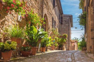 Naklejka Brukowane uliczki pięknie urządzonych ścian z colo