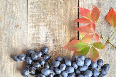 Brush czarne winogrona na drewnianej powierzchni, kopia przestrzeń. z czerwonymi liśćmi. koncepcja jesieni
