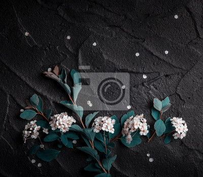 Bukiet czerwonych maków i biały Spiraea na czarnym tle. Dzikie kwiaty.