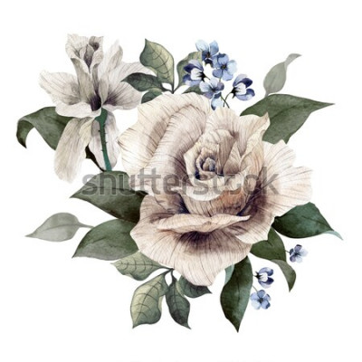 Naklejka Bukiet róż, akwarela, może służyć jako kartka z życzeniami, karta zaproszenie na ślub, urodziny i inne tło wakacje i lato