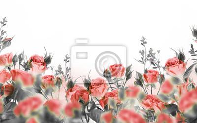 Bukiet róż z motylami, kwiatami ogrodowymi. Tło kwiatowy.