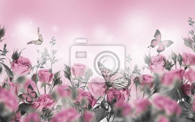 Bukiet różowych róż z motylami, kwiaty ogrodowe. Tło kwiatowy.