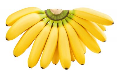 Naklejka bunch of bananas isolated on white background, clipping path, full depth of field