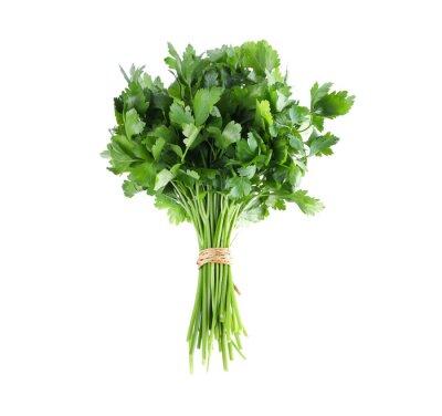 Naklejka Bunch of fresh green parsley isolated on white