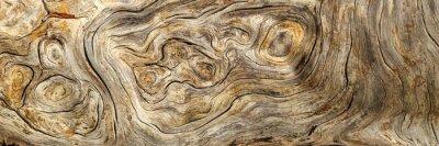 Naklejka Burlwood Stump