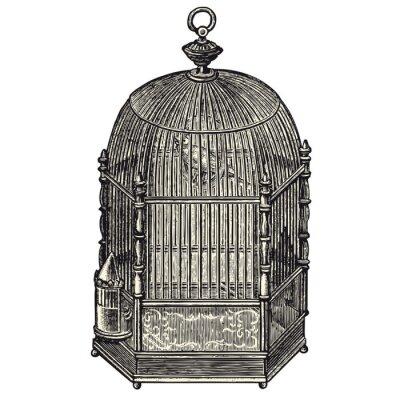 Naklejka Cage à oiseaux