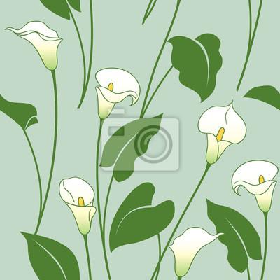 Calla lily wzór