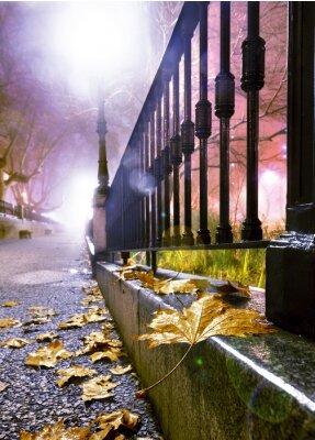Naklejka Calle en ciudad por la noche, hojas en el suelo y farola