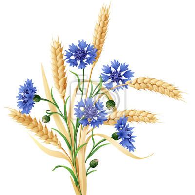 Chabry i kłosy pszenicy garść