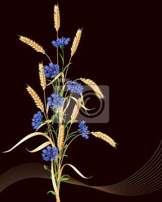 Chabry i kłosy pszenicy na czarnym pęczek