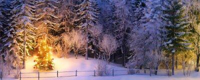 Naklejka Choinka w snowy lasu - weihnachtsbaum w verschneitem