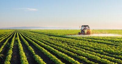 Naklejka Ciągnik rozpylanie pola soi
