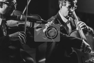 Naklejka Classical music concert performance