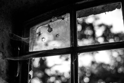 Naklejka Close-up Of Broken Glass Window