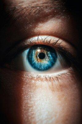 Naklejka Close-up Portrait Of Human Eye