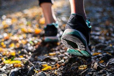 Naklejka Closeup of footwear of a female runner getting ready for a trail run
