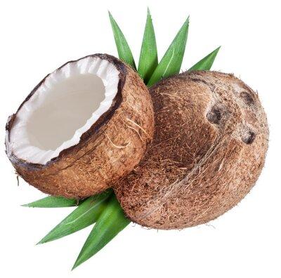 Naklejka Coconut z liśćmi.