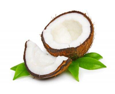 Naklejka Coconut z zielonych liści