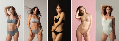Naklejka Collage of portraits of young beautiful slim tanned women in lingerie posing isolated over studio background. Natural beauty concept.