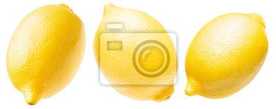 Naklejka collection of lemon isolated on a white background