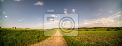 Naklejka Country road through the fields