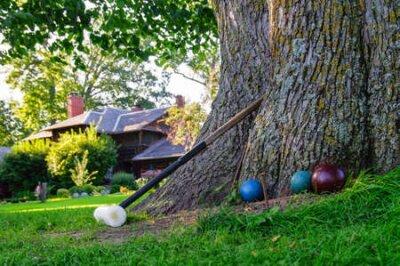 Croquet Mallet i kule oparty o drzewo, czekając grać