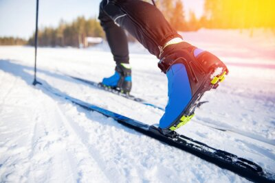 Naklejka Cross country skiing Banner, winter sport on snowy track, sunset background