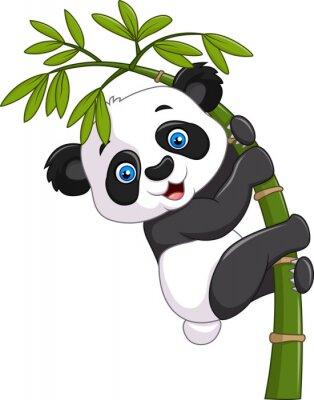 Naklejka Cute funny baby panda wiszące na drzewie bambusa
