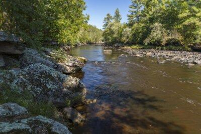 Naklejka Czajnik Rzeka