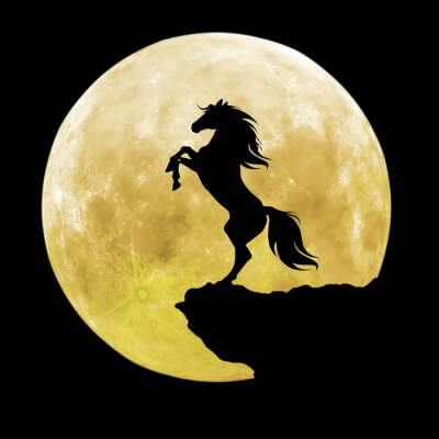 Naklejka czarna sylwetka konia