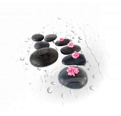 Naklejka Czarne kamienie spa i różowe kwiaty na krople wody