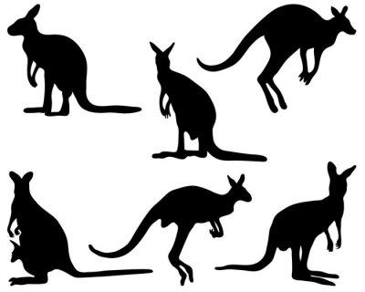 Naklejka Czarne sylwetki kangura, ilustracji wektorowych