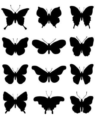 Naklejka Czarne sylwetki motyli na białym tle, wektor