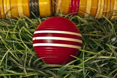 czerwona kula i młotki krokiet na zielonej trawie