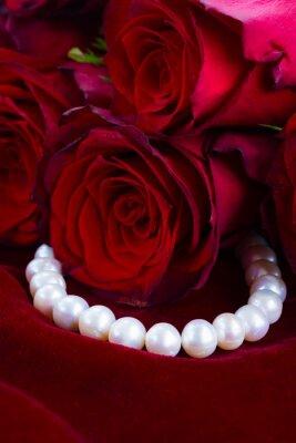Naklejka czerwona róża na aksamicie