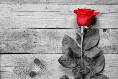 Naklejka Czerwona róża na czarnym i białym tle drewnianych