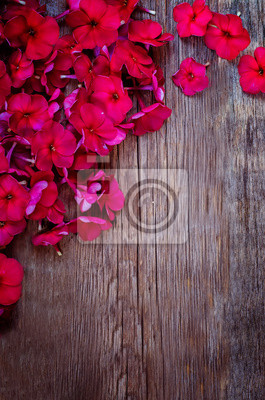 Naklejka czerwone kwiaty
