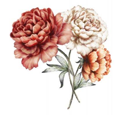 Naklejka czerwone piwonie. kwiaty akwarela. kwiatowy w kolorach pastelowych. bukiet kwiatów samodzielnie na białym tle. Liść. Romantyczna kompozycja na ślub lub kartkę z życzeniami.