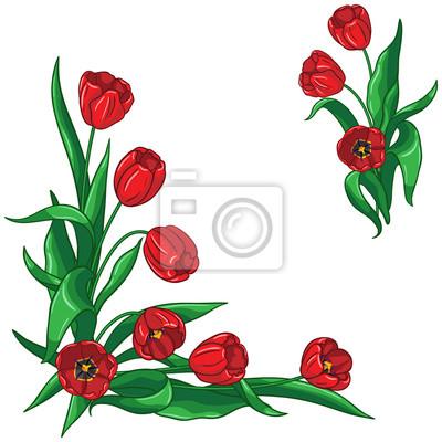 Czerwone tulipany bukiet ramki