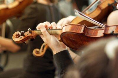 Naklejka Członek orkiestry muzyki poważnej grającej skrzypce na koncercie