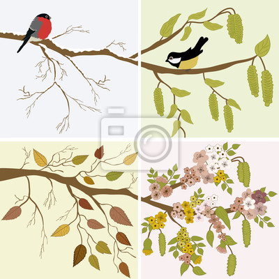 Naklejka Cztery pory roku, wiosna, lato, jesień, zima
