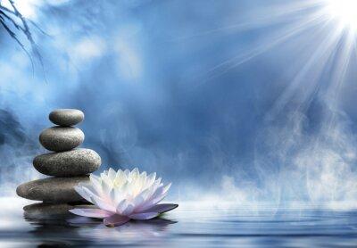 Naklejka czystość zen masażu