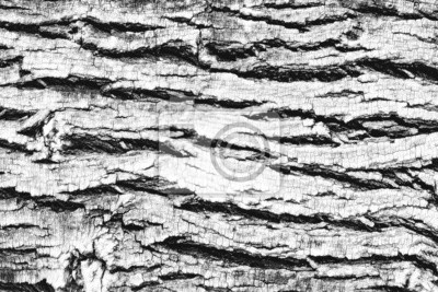 Naklejka Dark Wood Texture
