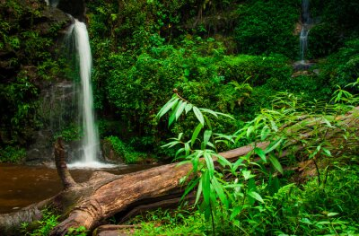Naklejka Doi Suphet National Park wodospad, Chang Mai, Tajlandia