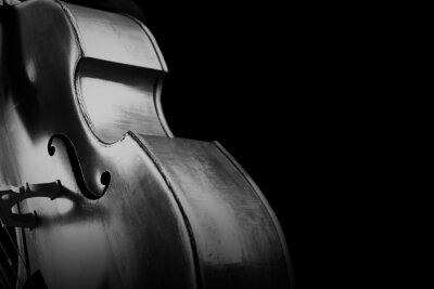 Naklejka Double bass. Contrabass classical music instrument