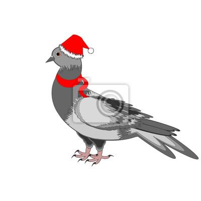 Naklejka Dove Boże Narodzenie na białym tle