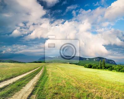 Droga na zielonym polu. Krajobrazu rolniczego