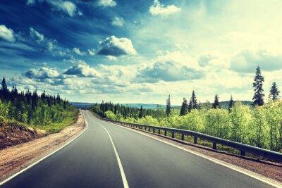 Naklejka Droga w północno lesie
